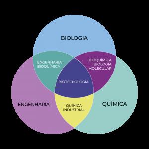 Diagrama mostrando as áreas que compõem a Biotecnologia. São elas: biologia, bioquímica biologia molecular, química, química industrial, engenharia e engenharia química.