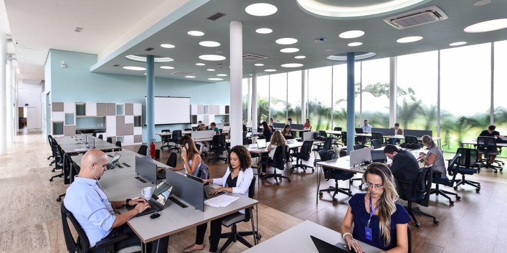 Fotos mostrando vários empreendedores utilizando o coworking do BiotechTown. A foto ilustra o blog post sobre os desafios de empreender em biotecnologia e ciências da vida